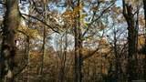 Lot 41 Plentywood Drive - Photo 3
