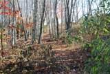 0 Hickory Nut Gap Road - Photo 8