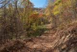 Tract 15 Sigogglin Trail - Photo 3