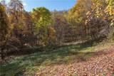 Tract 15 Sigogglin Trail - Photo 4