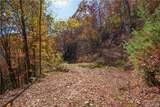 Tract 17 Sigogglin Trail - Photo 2