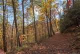 Tract 17 Sigogglin Trail - Photo 3