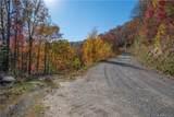 Tract 17 Sigogglin Trail - Photo 6