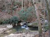 00 Blackberry Trail - Photo 31