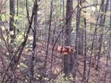 E- 20 Red Wolf Run - Photo 7
