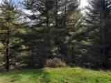 Lot 38 Fawn Trail Lane - Photo 4
