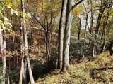 Lot 39 Fawn Trail Lane - Photo 2
