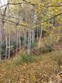 Lot 39 Fawn Trail Lane - Photo 6