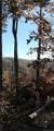 V/L 238 Scenic Vista Drive - Photo 8