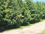 105 Crossvine Trail - Photo 4