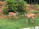 170 Blue Ridge Trail - Photo 41