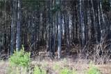 36 Carolina Buckthorn Drive - Photo 16