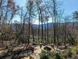 90 Smokey Ridge Trail - Photo 43