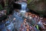 Tract 71 Whitetail Trail - Photo 2