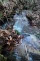 Tract 71 Whitetail Trail - Photo 22