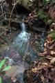 Tract 71 Whitetail Trail - Photo 25