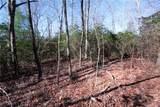 Tract 71 Whitetail Trail - Photo 26