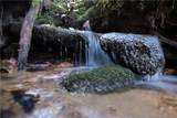 Tract 71 Whitetail Trail - Photo 28