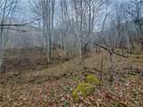 TBD Mountain Springs Road - Photo 4