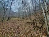 TBD Mountain Springs Road - Photo 7