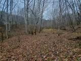 TBD Mountain Springs Road - Photo 8
