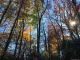 9 Flora Rose Trail - Photo 17