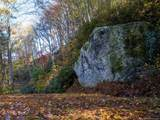 9 Flora Rose Trail - Photo 8