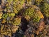 238 Grandiflora Path - Photo 9