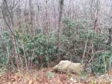 Lot 60/61 Coyote Hollow Road - Photo 4