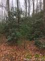 Lot 60/61 Coyote Hollow Road - Photo 8