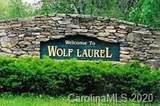 2541 Wolf Laurel Road - Photo 15