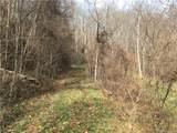 Lot 16 Coyote Hollow Road - Photo 2