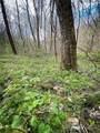 0000 Metcalf Creek Loop - Photo 5