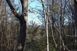 0 Piney Creek Drive - Photo 6