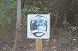 9999 Laurel Mountain Trail - Photo 3