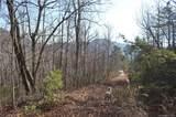 9999 Laurel Mountain Trail - Photo 10