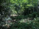 TBD Silver Maple Trail - Photo 2