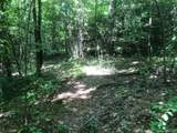 TBD Silver Maple Trail - Photo 3