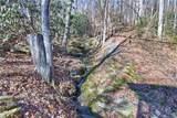 1364 Bearwallow Mountain Road - Photo 36
