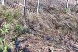 1364 Bearwallow Mountain Road - Photo 40