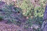 1364 Bearwallow Mountain Road - Photo 42