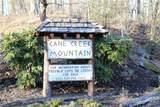 0 Cane Creek Mountain Road - Photo 2