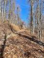 TBD Eastatoe Gap Road - Photo 11