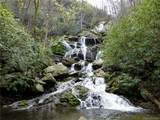 25 Feather Falls Trail - Photo 7