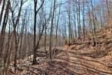 30 Acres Elk Creek Darby Road - Photo 11