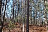 30 Acres Elk Creek Darby Road - Photo 14