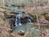 6 Pine Cone Trail - Photo 1