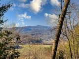 590 Three Mile Knob Road - Photo 32