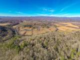 590 Three Mile Knob Road - Photo 48