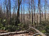 65 Indian Camp Mountain Road - Photo 4